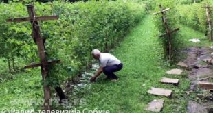 Ивањица: Град уништио малињаке, штета још увек није процењена (видео) 11