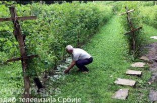 Ивањица: Град уништио малињаке, штета још увек није процењена (видео)