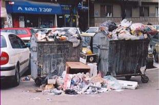 НИШЛИЈЕ БЕСНЕ: Град нам се претворио у велику депонију