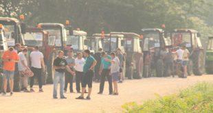Произвођачи купина: Блокираћемо путеве у Србији