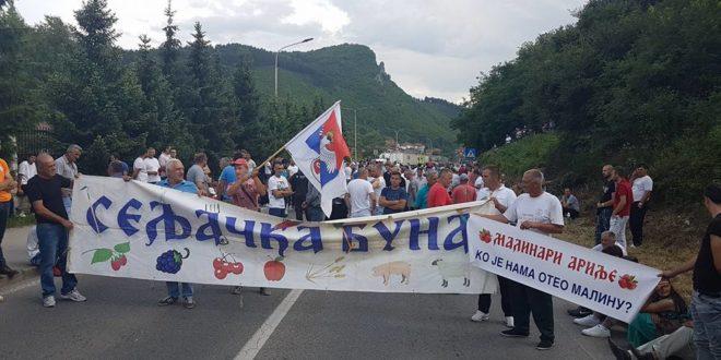 Малинари: Немамо рачун да гајимо малину за цену од 100 динара, блокирана магистрала ка Црној Гори! (видео) 1