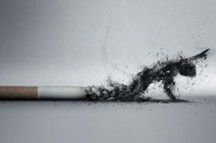 Пушачи удишу најмање два пута више катрана и никотина него што пише на паклицама