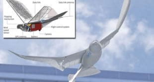 Шпијунски голубови - Кина покренула програм птица-дронова 4