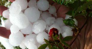 Ужас и у Лозници: Град у року од 20 минута покосио све! Уништени усеви, воћњаци… 11