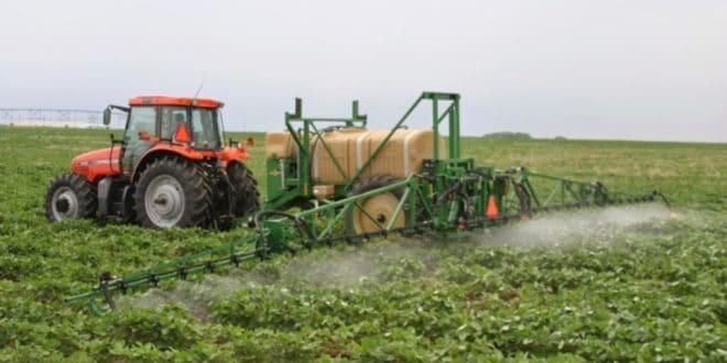 Пестициди заглупљују свет: Откривено да пољопривредне хемикалије смањују ИQ код деце