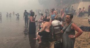 ВАТРЕНА СТИХИЈА КОД АТИНЕ: Најмање 60 мртвих, стотине несталих (фото, видео) 10