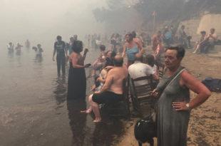 ВАТРЕНА СТИХИЈА КОД АТИНЕ: Најмање 60 мртвих, стотине несталих (фото, видео)