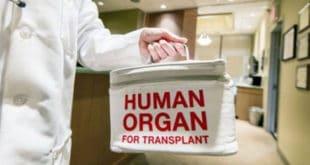 Једини начин да не будете присилни донор је да се успротивите у Управи која не постоји