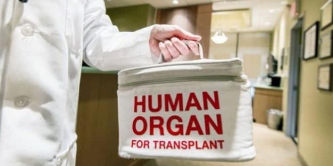 Једини начин да не будете присилни донор је да се успротивите у Управи која не постоји 1