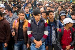 АУСТРИЈСКИ МИНИСТАР: Са Србијом договорено да буде центар за мигранте (видео) 6