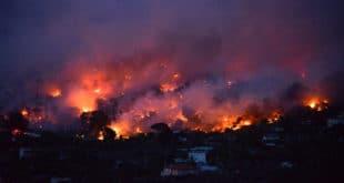 Полиција ухапсила четворицу за подметање пожара у предграђима Атине 12