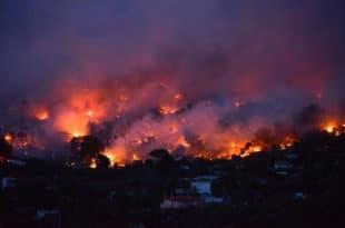 Полиција ухапсила четворицу за подметање пожара у предграђима Атине