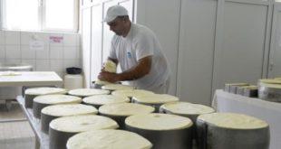 У Србији је и то могуће: У затвор због куповине качкаваља 11