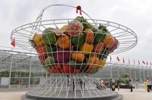 Нови велики пројекат Кинеза у Србији могао би да реши и муку малинара, воћара и повртара