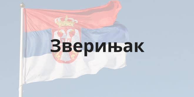 Шта је ово што се данас Србијом зове?