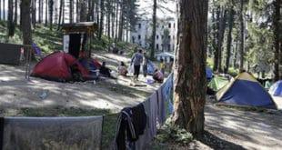 СРБИЈА И мигранти беже из Србије 4