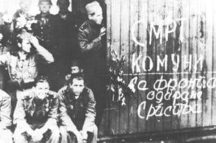 Посмртни остаци Димитрија Љотића биће враћени у Србију?