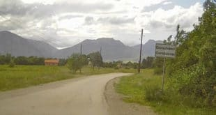 Србима у Гораждевцу украдено шест крава и теле