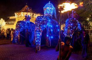 Београд: Милиони за светлеће слонове