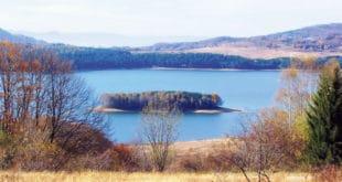 Власина: Угрожено највеће плутајуће тресетно острво на Балкану 11