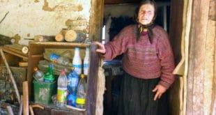 Србија: Газе по злату, а умиру од глади 9
