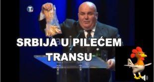 Србија у пилећем трансу и кокошијем лудилу! (видео) 3