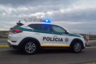 10-ак полицијских аутомобила из Словачке, ауто-пут Београд- Ниш (видео)