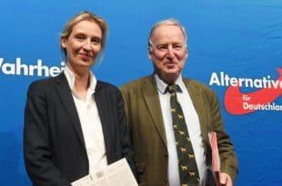Алтернатива за Немачку друга по популарности – претекла социјалдемократе