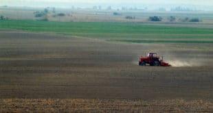 РЕСТИТУЦИЈА НИ БЛИЗУ КРАЈА: Грађани траже 100.000 хектара 15