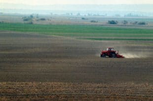 РЕСТИТУЦИЈА НИ БЛИЗУ КРАЈА: Грађани траже 100.000 хектара