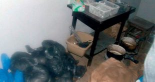 Гдје је нестала лабораторија за прераду хероина Есада Кера Љајића? 10