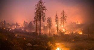 Гори Калифорнија: Десетине мртвих и несталих, уништено на хиљаде објеката, евакуисано 157.000 људи (видео) 8