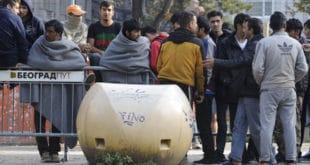 Комшије неће да потпишу УН пакт који миграције прави људским правом?! 6