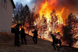 Катастрофални пожари и даље харају Калифорнијом: 63 мртвих, стотине несталих (видео)