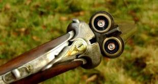 Сељаци предају оружје полицији: Нова дозвола за ловачку пушку кошта ко ухрањена свиња 8