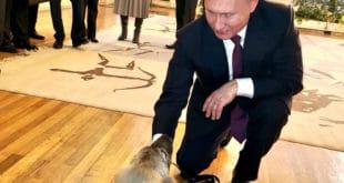 Путин: Хвала Србима на топлом пријему (видео) 7