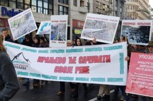 Одржан протест против изградње МХЕ у Србији: Штета по реке велика (видео) 8