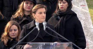 """СНП """"Наши"""" тужио Брнабић због тога што их је назвала фашистима"""