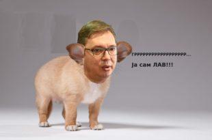 МИХАИЛО МЕДЕНИЦА: Не требају нам лавови већ људи, Александре Вучићу!