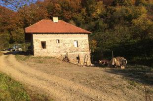 Шиптарске терористичке банде упале у два села код Кушрумлије!