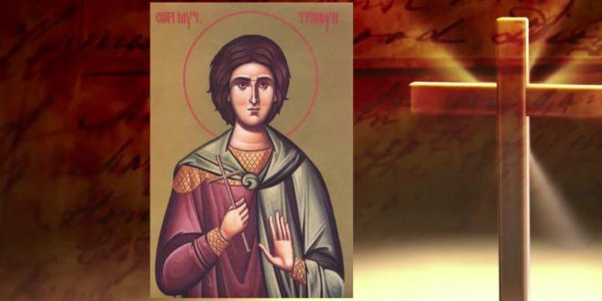 Данас славимо Светог Трифуна 1