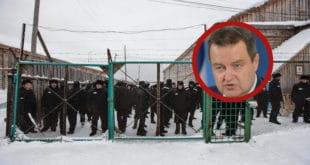 Ти ћеш ЦРВЕНО ВЕЛЕИЗДАЈНИЧКО КРМЕ да завршиш у руској кажњеничкој колонији у Сибиру!