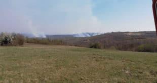 Пожар захватио атаре три села код Неготина и површину од 550 хектара 2