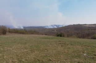 Пожар захватио атаре три села код Неготина и површину од 550 хектара