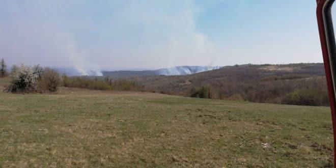 Пожар захватио атаре три села код Неготина и површину од 550 хектара 1