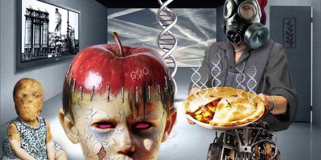 Купци желе да се генетски модификована храна обавезно декларише