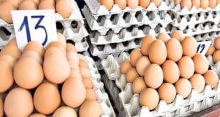 УНИШТЕНО ЖИВИНАРСТВО! Србија увезла чак 12 милиона јаја