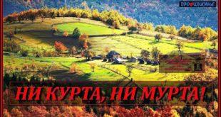 Бранко Драгаш и др Јована Стојковић '' НИ КУРТА НИ МУРТА! '' (видео)