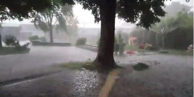 Невреме у Бачкој донело град и јак олујни ветар (видео) 1