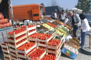 СРПСКА САЛАТА ИЗ АЛБАНИЈЕ: Наша земља све више увози свеже поврће са свих континената, али највише из комшилука